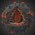 На сайте Infographer.ru наткнулся на весьма интересную новость. 18 февраля журнал Science объявил победителей 8-го ежегодного Международного конкурса научной и инженерной визуализации. Лучшей научной иллюстрацией года стало изображение 3D-модели ВИЧ,...